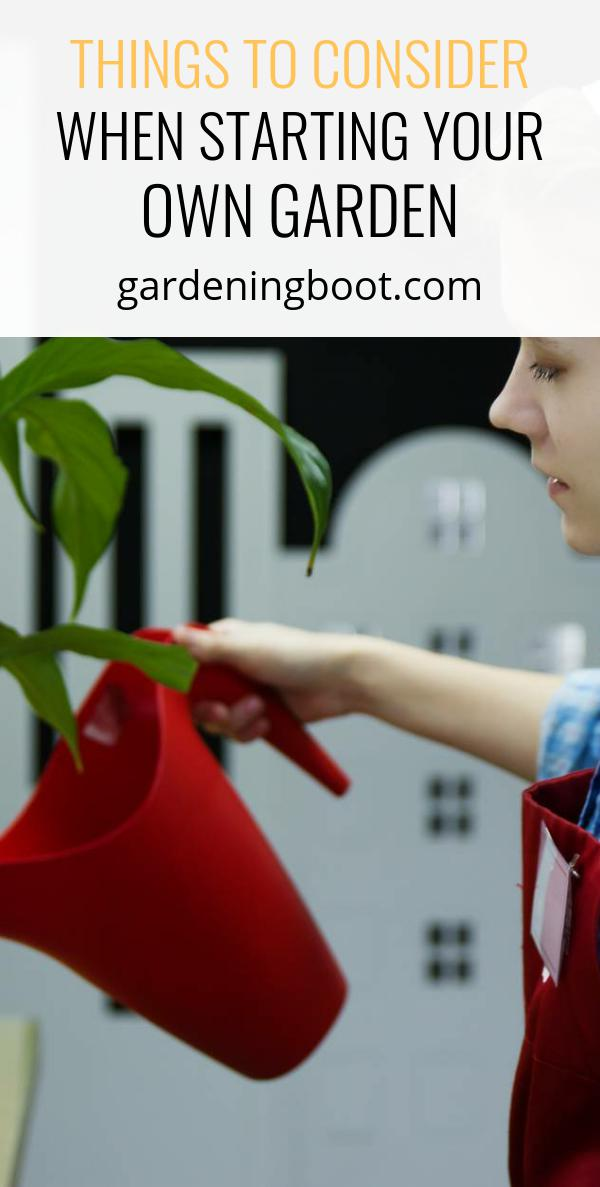 Things to Consider when Starting Your Own Garden