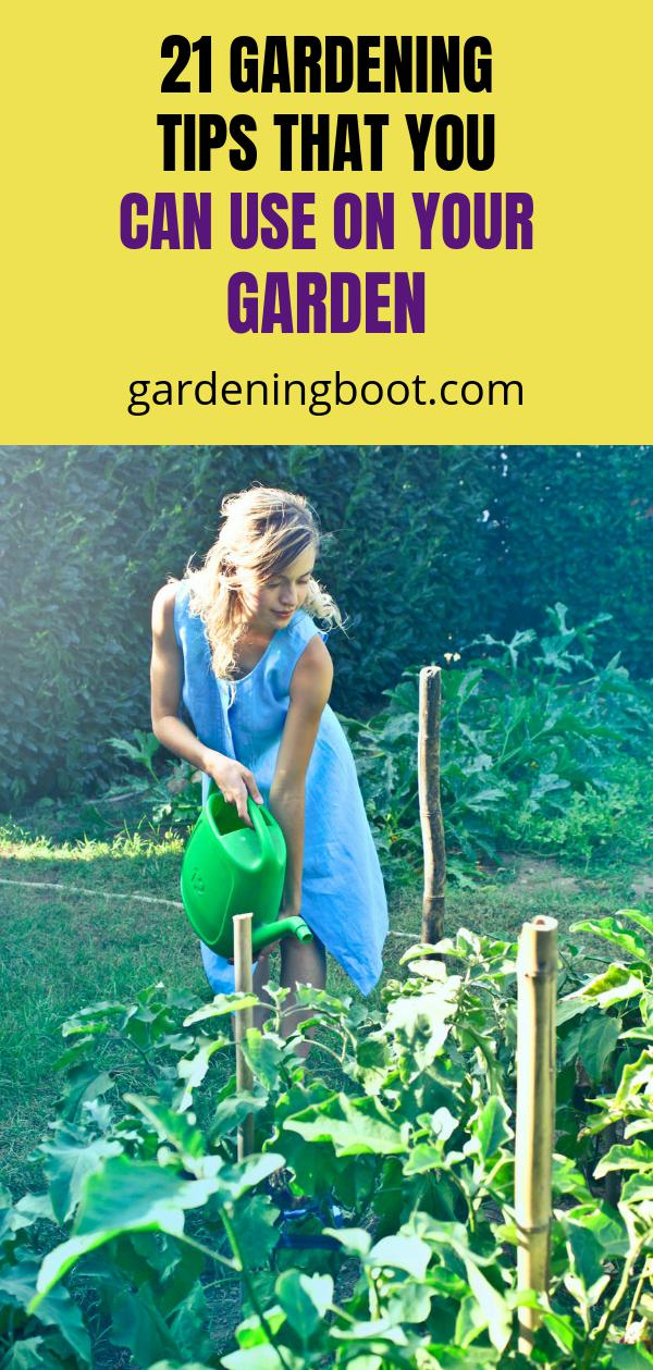 21 Gardening Tips that You Can Use on Your Garden