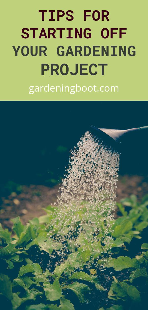 Tips for Starting Off Your Gardening Project