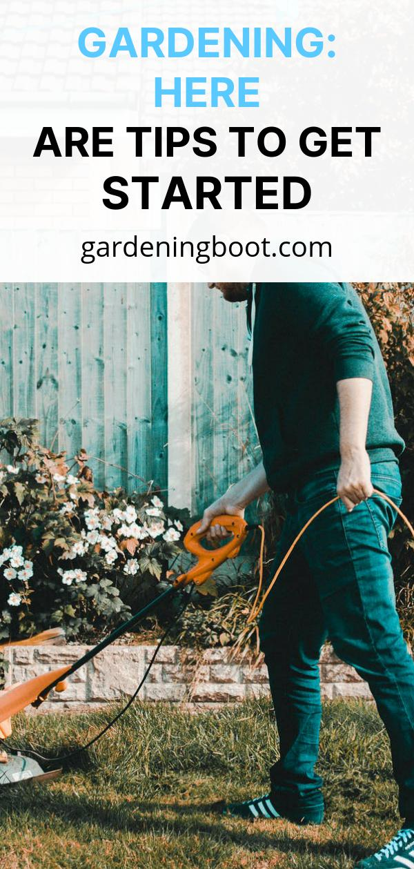 Gardening: Here Are Tips To Get Started