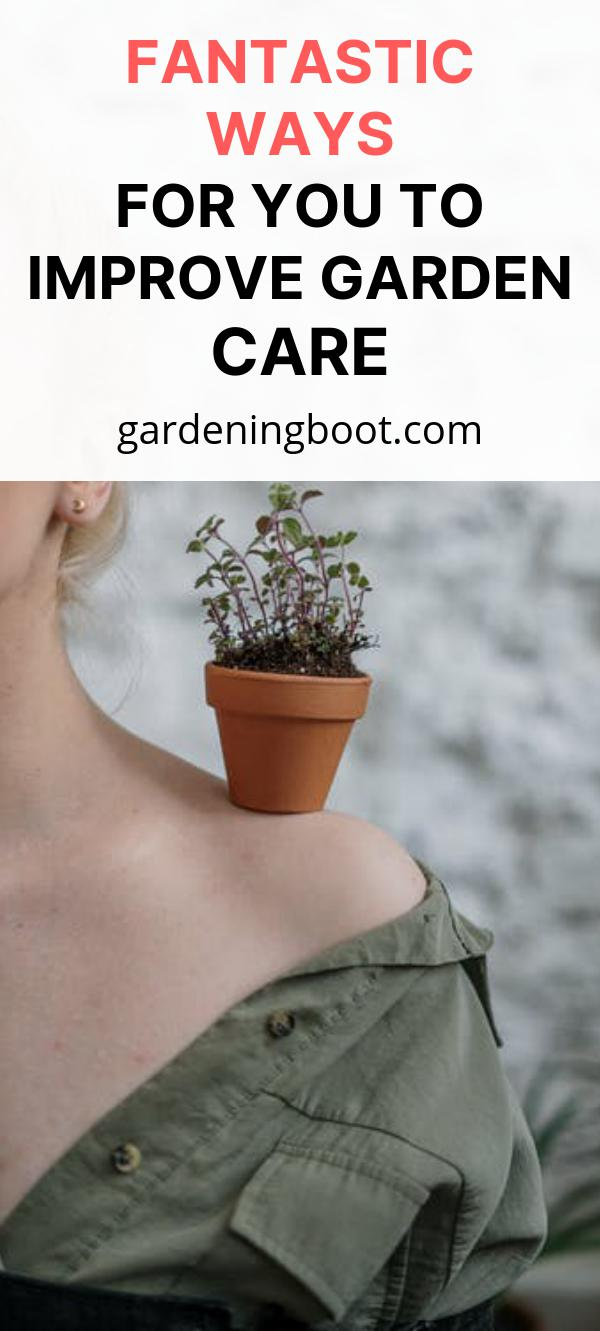 Fantastic Ways for You to Improve Garden Care