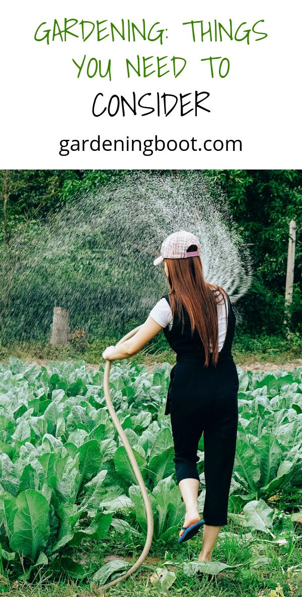 Gardening: Things You Need To Consider
