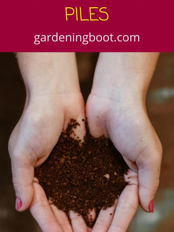 A Comprehensive Guide for Composting Piles