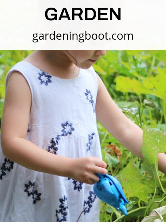 Things to Consider when Planning Your Garden