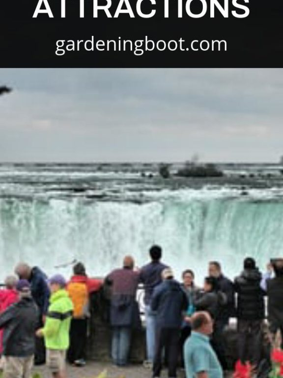 Learn About Niagara Falls Attractions
