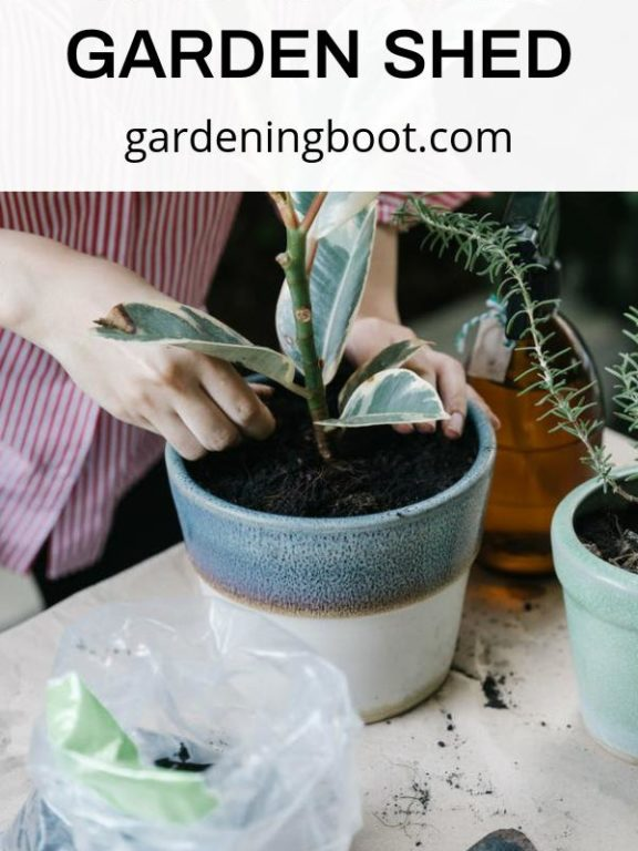 Essential Items You Should Keep in Your Garden Shed