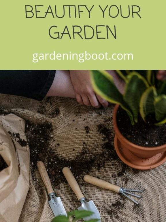 How Choosing the Right Gardening Tools Can Help You Beautify Your Garden